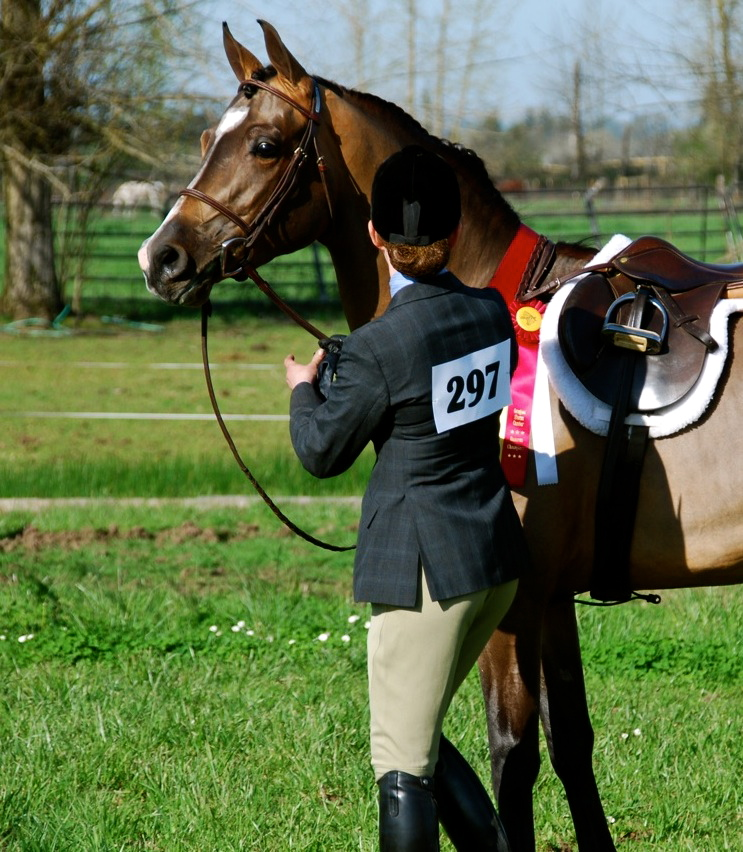 Danskk-MF_First-show-Reserve-Champion